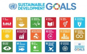 Sustainable Development Goals (SDG's)