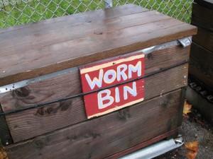 simple worm farm
